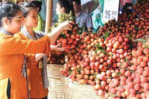 Nông sản Việt: Đừng lãng phí chỉ dẫn địa lý