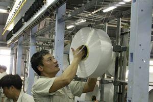Dự án Xơ sợi 7.000 tỷ hoạt động trở lại sau gần 3 năm đóng cửa