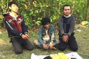 Bắt vụ vận chuyển 24 ngàn viên ma túy từ Lào về Việt Nam