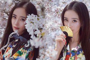 Dương Mịch lung linh tựa tiên nữ giữa vườn hoa anh đào