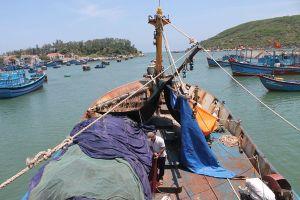 Miền biển 'cạn' ngư dân
