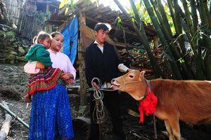 Lai Châu xóa nghèo