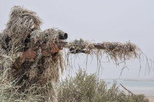 Kết thúc tập trận 'Lá chắn chung vùng Vịnh-1': Hiện diện nhiều vũ khí hiện đại