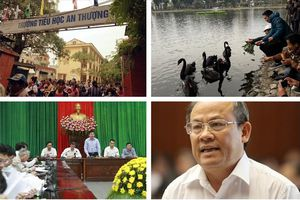 Tin tức Hà Nội 24h: Vì sao một con thiên nga ở hồ Thiền Quang biến mất?