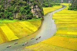 Nhiều chương trình đặc sắc tại Tuần du lịch Ninh Bình 2018 'Sắc vàng Tam Cốc – Tràng An'