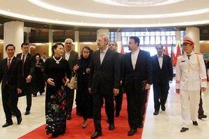 Tiếp tục thúc đẩy hợp tác kinh tế, thương mại Việt Nam-Iran
