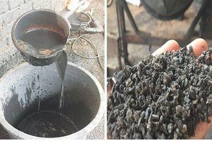 3 tấn cà phê 'bẩn' rang xay cùng bột đá và pin con ó được bán về tỉnh nào?
