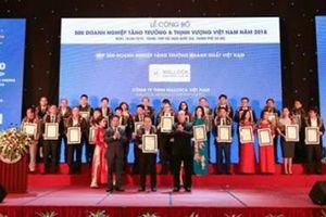 Malloca nhận giải Top 500 doanh nghiệp tăng trưởng nhanh nhất VN