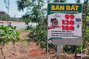 'Sẽ có rủi ro khi mua đất nền sốt nóng tại các đặc khu'