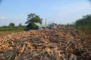Gia Lai: Kiểm tra các lò đốt than gây ô nhiễm môi trường