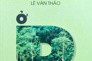 'Ở R': Chuyện về Lê Anh Xuân và trận đánh Tết Mậu Thân 1968