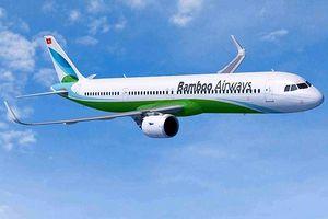 Hãng hàng không Bamboo Airways ra mắt bộ nhận diện thương hiệu