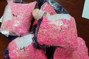 Tây Ninh khởi tố vụ án vận chuyển, mua bán hơn 11 kg ma túy