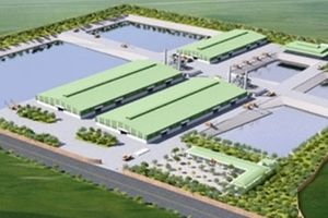 Thuận Thành EJS CO: Bảo vệ môi trường là bảo vệ chính mình