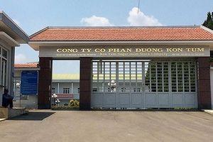 Nhà máy đường Kon Tum bị tố gây ô nhiễm