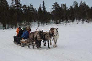 Bài 2: Saami - ngôi làng cổ tích