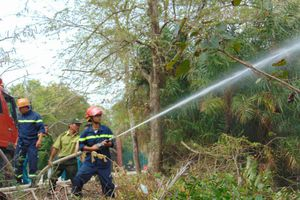 Bạc Liêu: Cảnh báo cháy rừng cấp 5