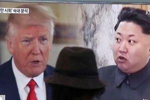 Tổng thống Trump khen ông Kim Jong-un đáng kính, muốn gặp càng sớm càng tốt