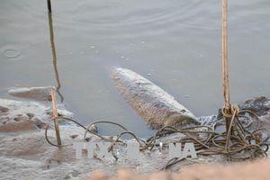 Quả bom dài 1,6m vẫn ở dưới ao nuôi tôm sau gần 1 tháng phát hiện