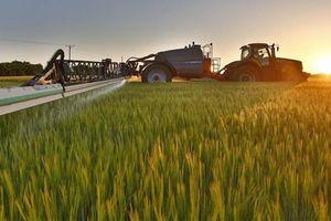 Ứng dụng blockchain trong nông nghiệp: Việt Nam lại đi sau người Thái