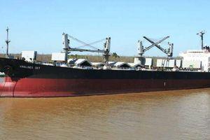 Doanh nghiệp 24h: Đại gia Hàng hải bán gấp tàu cắt lỗ