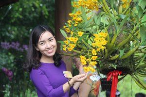 Huế: Triễn lãm 'Cây kiểng và phong lan 3 miền' tại Festival