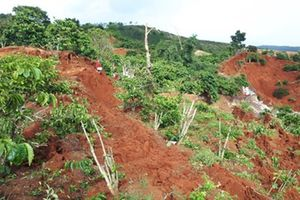 Sơn La: Mưa lớn làm sạt lở đất, 4 người thương vong