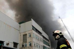 Cháy nhà xưởng ở Đài Loan: Toàn bộ lao động Việt Nam đều thoát nạn