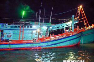 Cà Mau: Hành vi trộm ngư cụ trên biển diễn biến gia tăng và táo tợn