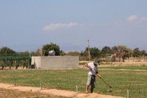 Nông dân xây bể chứa nước cứu 'vùng đất chết' như sa mạc Sahara