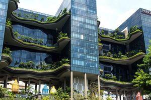 Mướt mắt ngắm khách sạn xanh ngắt như vườn treo Babylon