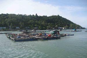 Trục xuất nhóm 'Hội Thánh Đức Chúa Trời Mẹ' truyền đạo trái phép ra khỏi đảo ở Kiên Giang