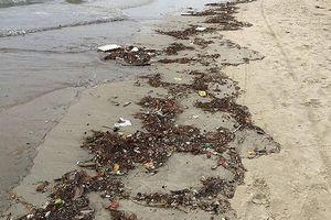 Biển Đà Nẵng lại ngập rác chỉ sau một trận mưa