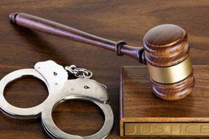 Quảng Ninh: Khởi tố đối tượng che giấu tội phạm