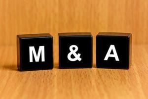 M&A ngân hàng 'nóng' trở lại?