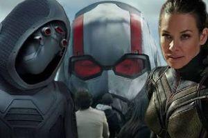 Những bí mật mà bạn có thể bỏ lỡ trong trailer 'Ant-Man And The Wasp'
