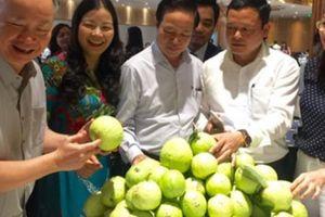 'Kéo' doanh nghiệp xuống ruộng vườn thu mua nông sản cho nông dân