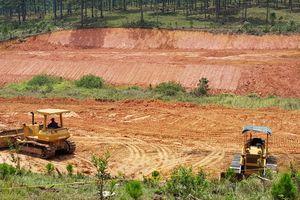 Lâm Đồng: Thu giữ nhiều phương tiện sau lệnh cấm san ủi đất