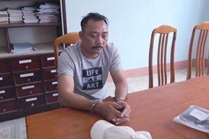 Vụ gỗ lậu tại Đắk Lắk: Khởi tố trùm Phượng 'râu' và 4 đồng phạm