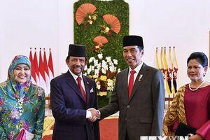 Indonesia và Brunei thúc đẩy hợp tác trên nhiều lĩnh vực