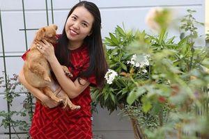 Vườn hồng ngoại 150 triệu đồng trên ban công của bà mẹ TP HCM