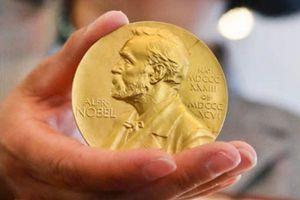 Giải Nobel Văn học 2018 bị hoãn vì bê bối tình dục