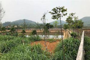 Hà Nội xác minh thông tin một thứ trưởng 'gom' đất nông trường