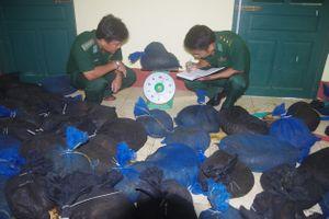 Kiểm tra dự án nuôi động vật hoang dã, chỉ phát hiện... 2 bộ xương khỉ
