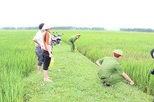 Thanh Hóa: Khởi tố đối tượng phun thuốc diệt cỏ phá hoại hơn 3 sào lúa