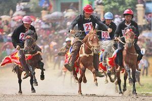 Lên vùng 'cao nguyên trắng' xem đua ngựa truyền thống