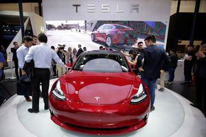 Cứ đà này, Tesla sẽ phá sản trong năm 2019