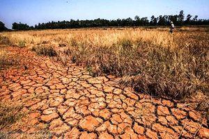 Việt-Pháp ra tuyên bố chung về nghiên cứu biến đổi khí hậu
