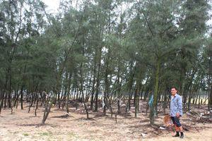 Người dân tự bỏ tiền trồng rừng