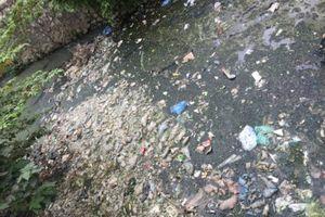 Mương Yên Hòa – Cầu Giấy đang bị ô nhiễm nghiêm trọng